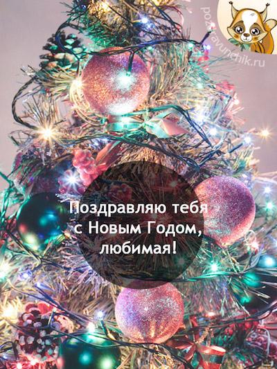 Поздравляю тебя с Новым Годом, любимая!