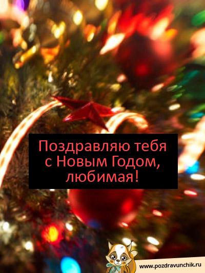 С Новым Годом, любимая!