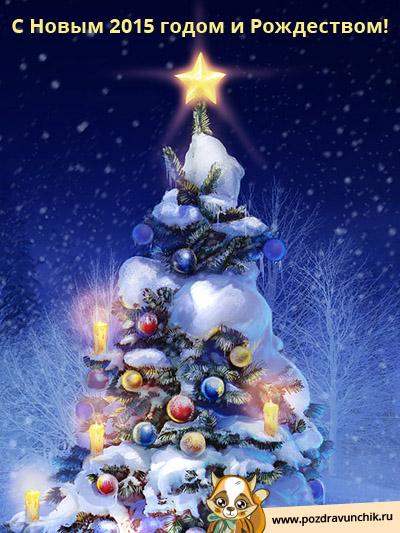 Поздравляю с Новым, 2015 годом и Рождеством!