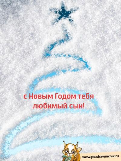 С Новым Годом, любимый сын!