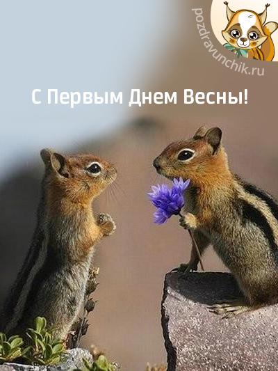 С Первыми Деньками Весны!