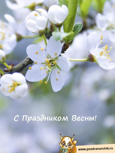 С Весной!