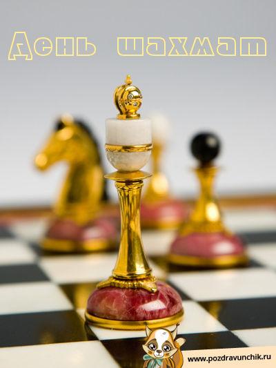 Сегодня день шахмат!