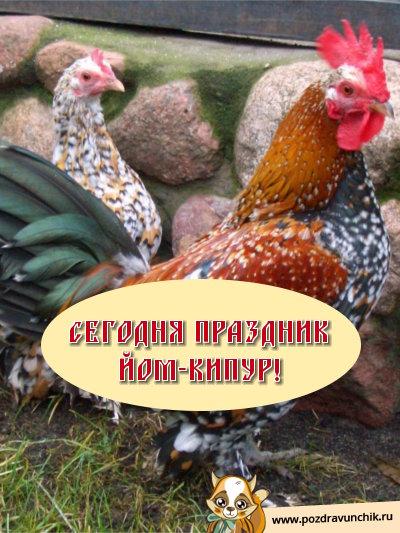 Сегодня праздник Йом Кипур