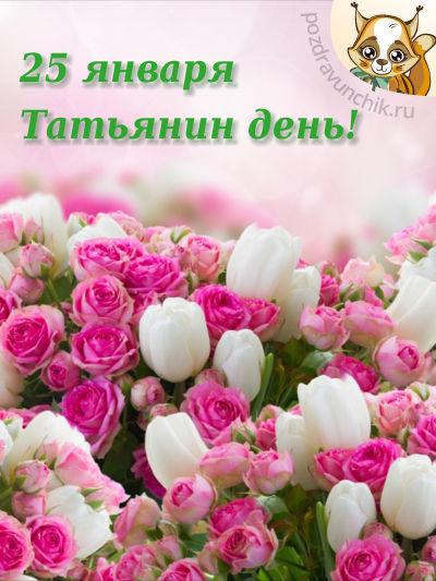 Красивые открытки с днем Татьяны - Бесплатно на 91